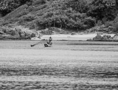 Sri Lanka - Trincomalee - Fisher