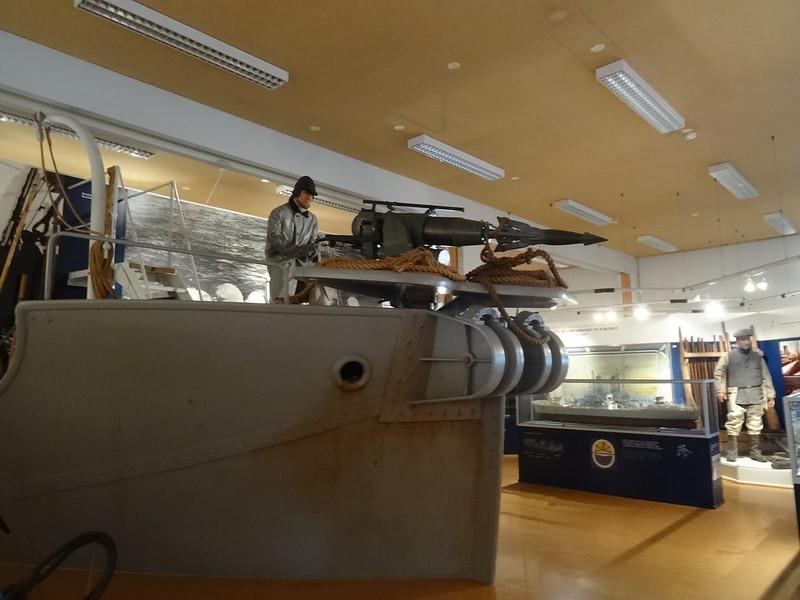 Museo de ballenas