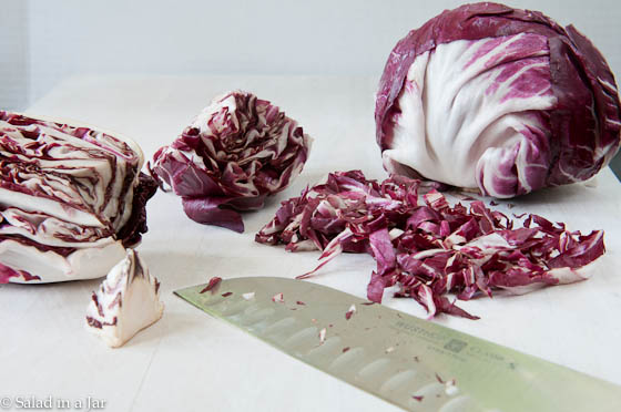 Romaine, Radicchio and Avocado Salad-7.jpg