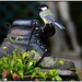 GREAT TIT BOOT