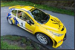 Rally 2012 - 2015