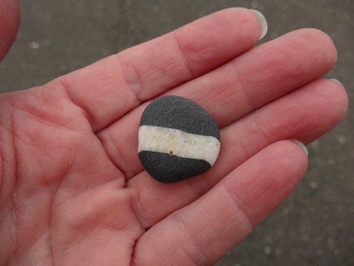 Banded rock from Tintagel