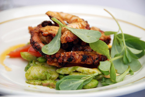 Grilled octopus with lima beans