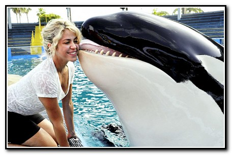 Shakira With Killer Whale