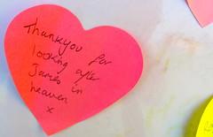 heart(0.0), lip(0.0), human body(0.0), circle(0.0), petal(0.0), eye(0.0), organ(0.0), text(1.0), heart(1.0), red(1.0), love(1.0), pink(1.0), valentine's day(1.0),