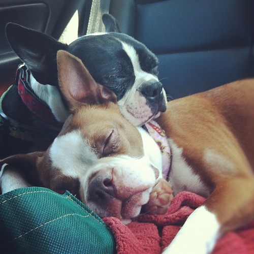Almost home and still tuckered out...