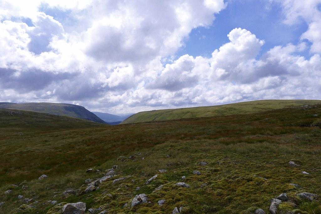 Towards the Eidart