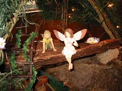 christmas(0.0), nativity scene(0.0), fairy(1.0), flower(1.0),