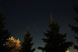 The constellation Orion in the sky above Moscow