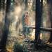 Step Forth by Elizabeth Gadd