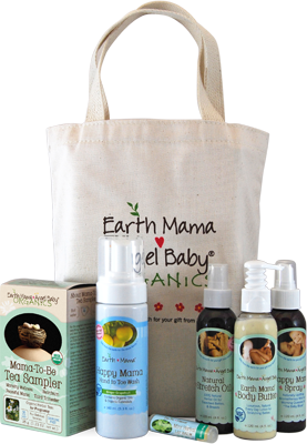 pregnancy-essentials-bundle_1
