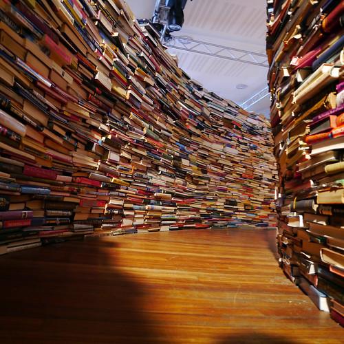 Perdu dans les livres