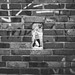 Another Brick in the Wall by marcin baran