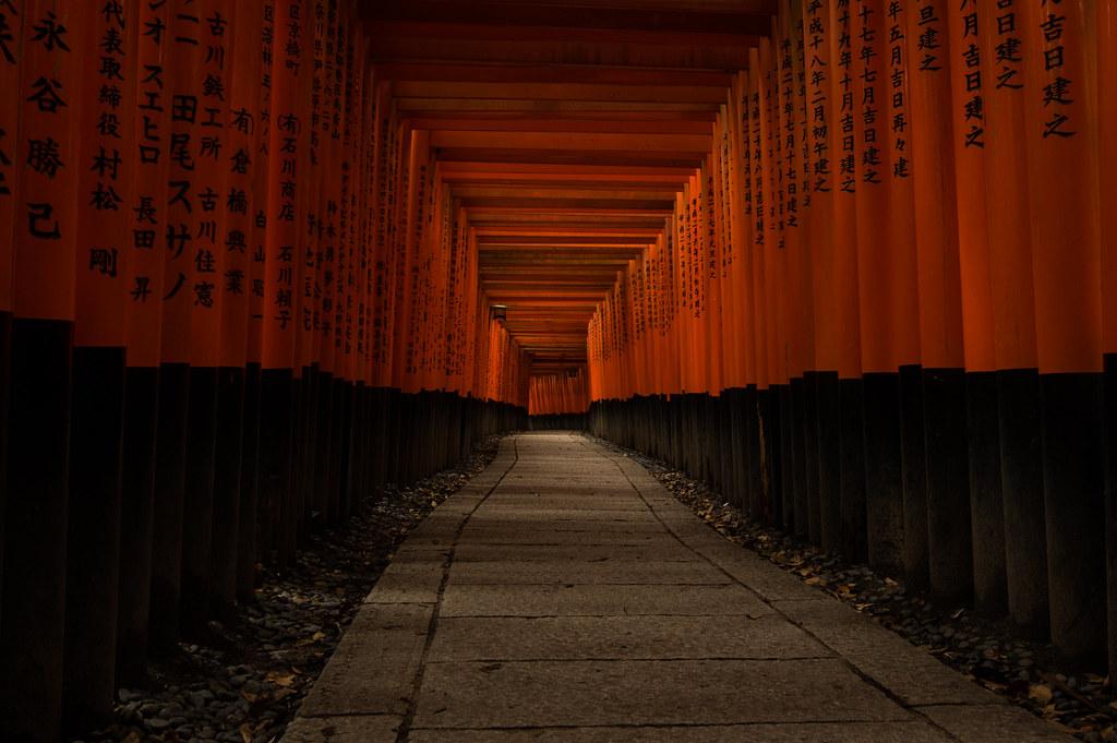 a thousand torii