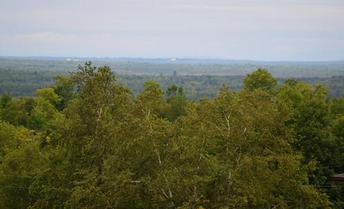 Aroostook County Countryside