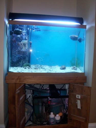 65 gallon tank with stand and sump for sale reef central for Fish tank sump pump