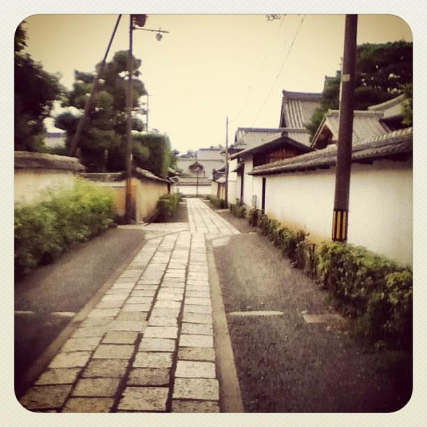 Walk home through Myoshinji temple complex.