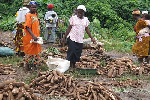 Cassava market by IITA Image Library