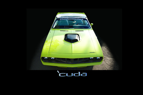 CUDA black back centered