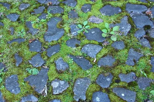 Cobblestones on the Brig o'Doon