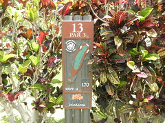 Makaha Valley Country Club 227