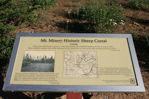 Mt Misery Historic Sheep Corral