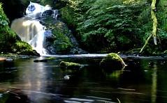 Falls and Pool