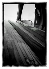 Wood ( from the back seat)