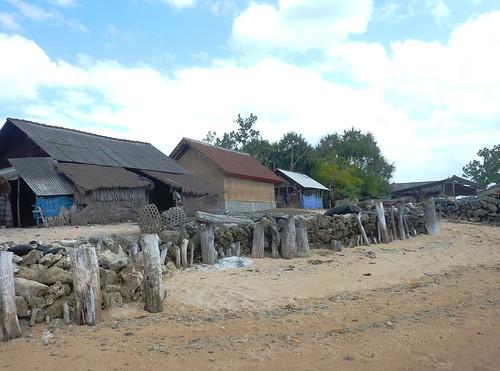 Bali-Lembongan-Mangrove (4)