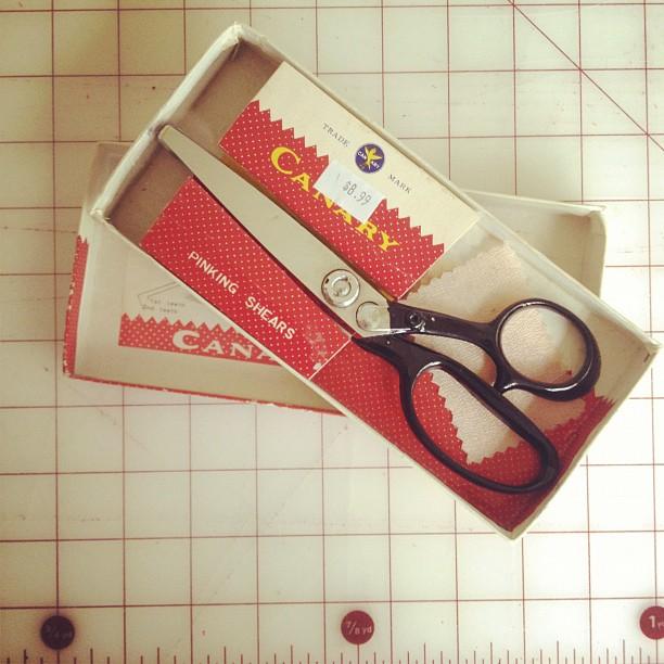 Thrifted Scissors