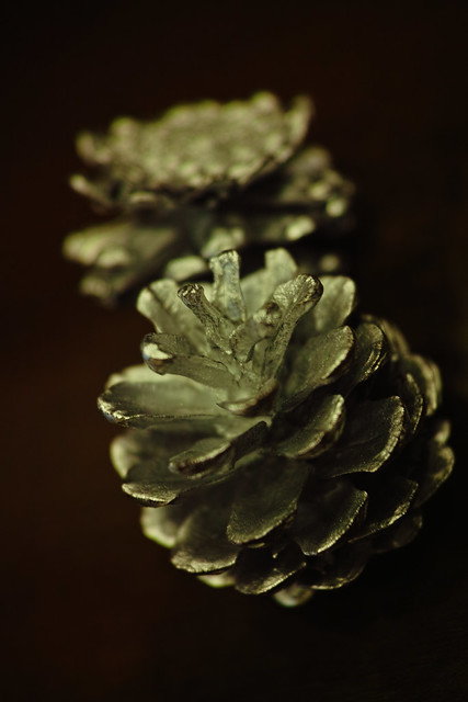 real silver pinecone