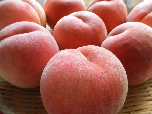 white peach has arrived from Sanjo