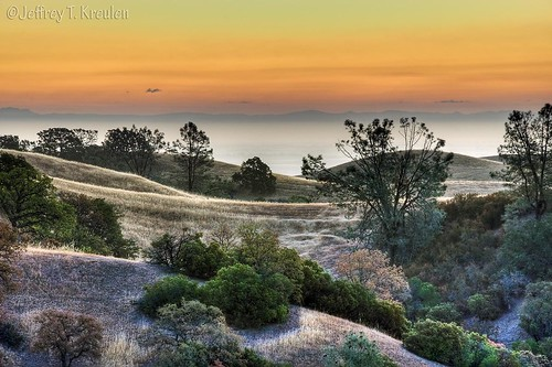 california tree nature grass pine sunrise landscape hill arbuckle manzanita sacramentovalley colusacounty colorphotoaward