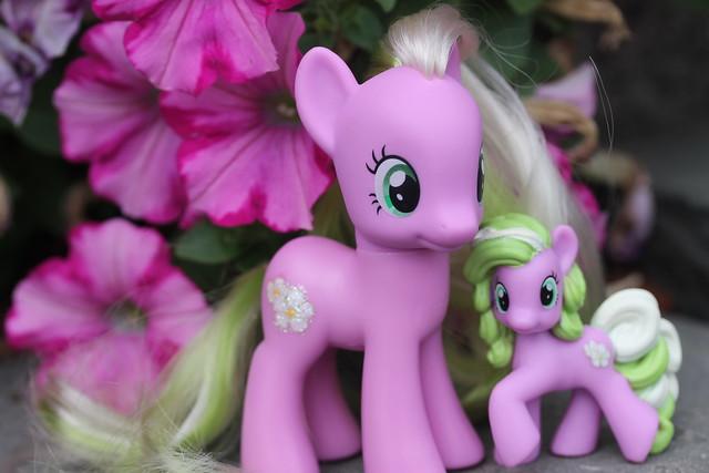 Flower WishesFlower Wishes Mlp
