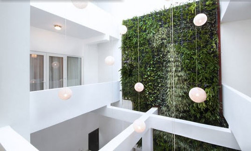 Panama City's Eco-Luxe Tantalo Hotel has a Two Story Living Wall and Artist Designed Rooms