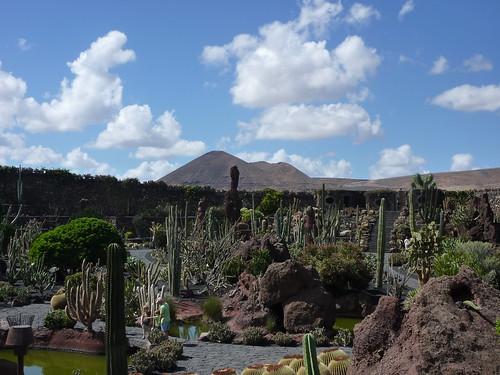 Jardín de cactus con las montañas de Lanzarote