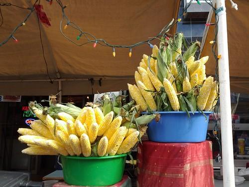 Corn-ucopia