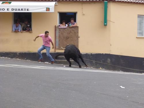 touros 9