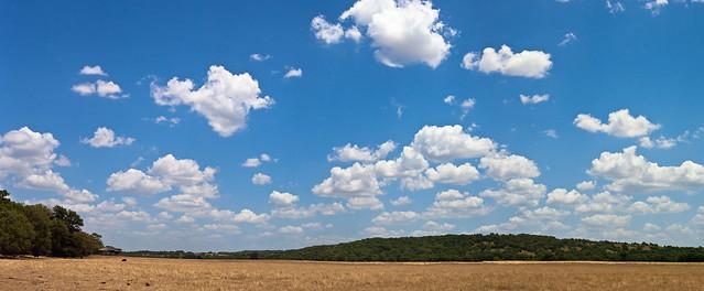 IMAGE: http://farm9.staticflickr.com/8427/7540449416_2c900e3ac7_z.jpg