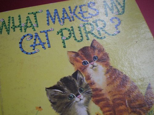What Makes My Cat Purr?