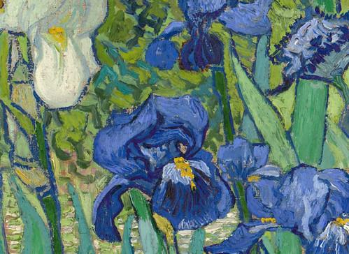Irises van gogh thinglink for Van gogh irises