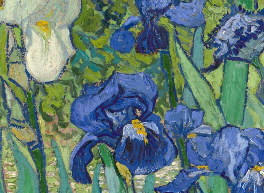 Vincent van gogh 39 irises 39 detail 1889 a photo on for Van gogh irises
