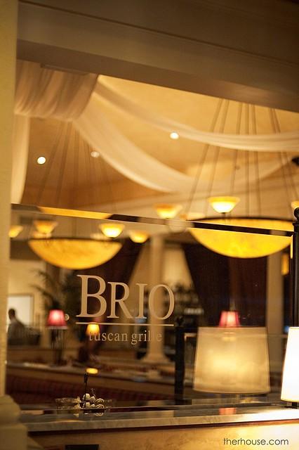 BRIO Review 10