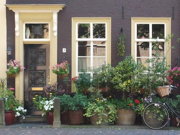 Delft24