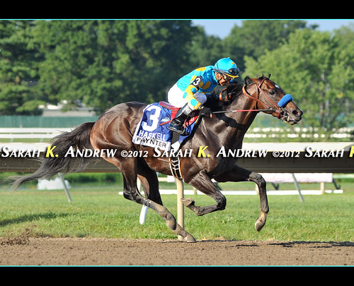 Baffert Wins Third Straight Haskell With Awesome Again's Paynter