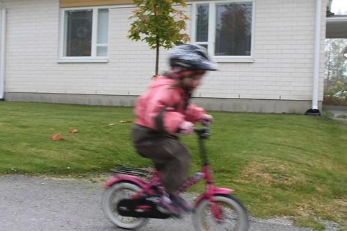 Pepin pyörä 1002b