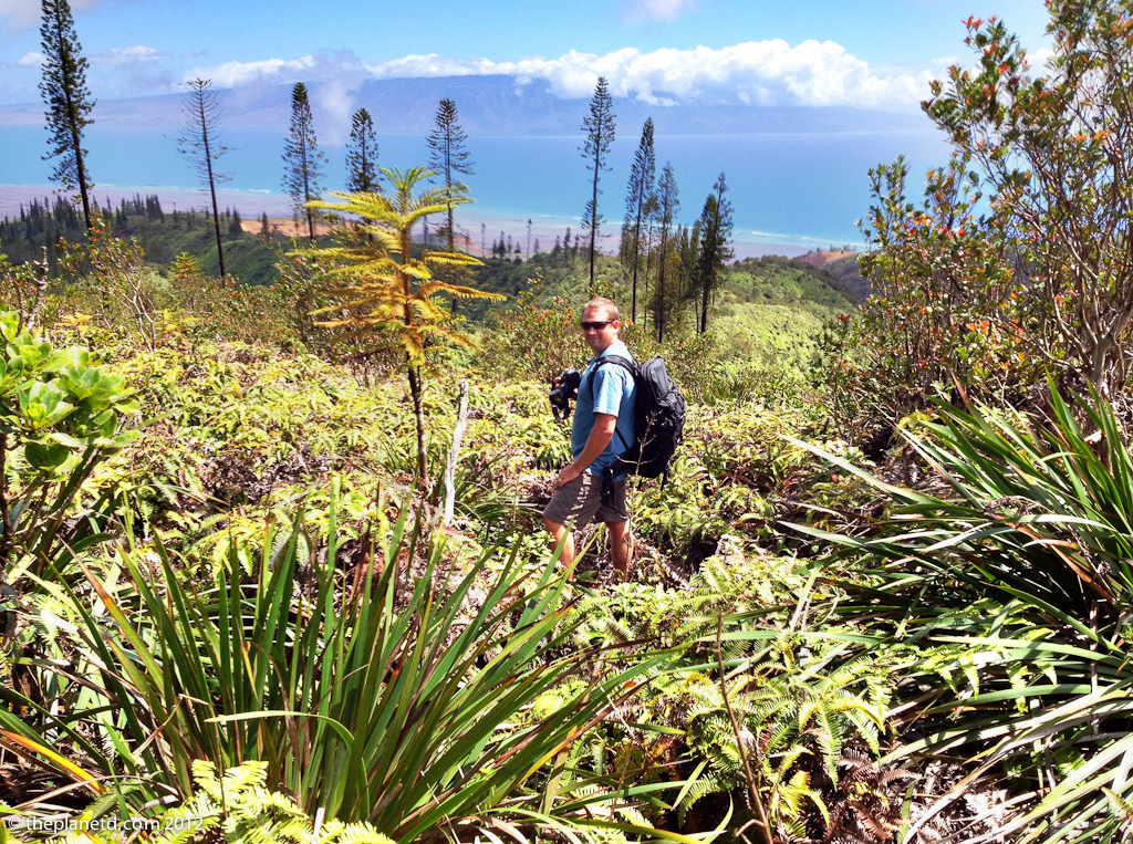 travel blog photographer Dave takes photos of Lanai Watershed