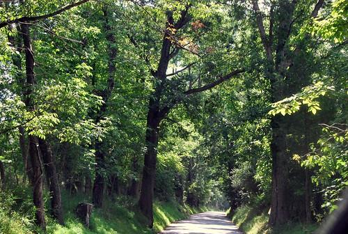 WPIR - farm road