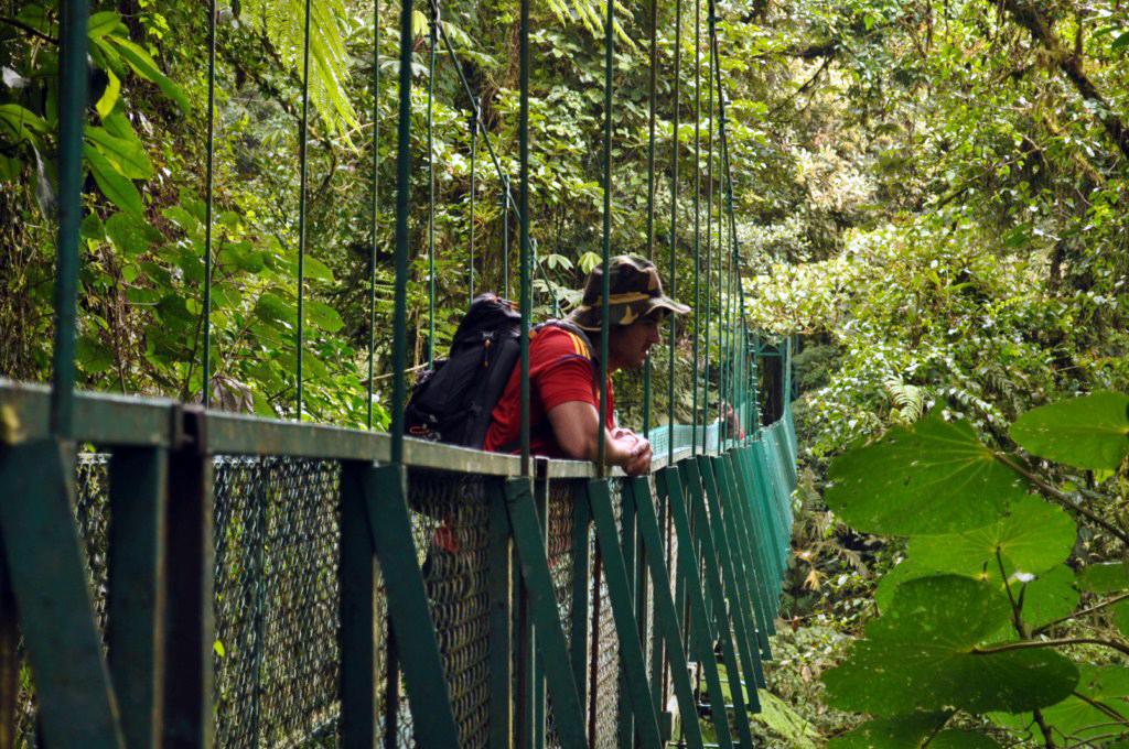 Los puentes colgantes ofrecen la oportunidad de ver la selva virgen desde las copas de los árboles y disfrutar de toda la naturaleza y biodiversidad que no sería posible explorar desde la base de los árboles monteverde, la reserva biológica del bosque nuboso - 7735197018 c6d7dfbe49 o - Monteverde, La reserva biológica del bosque nuboso