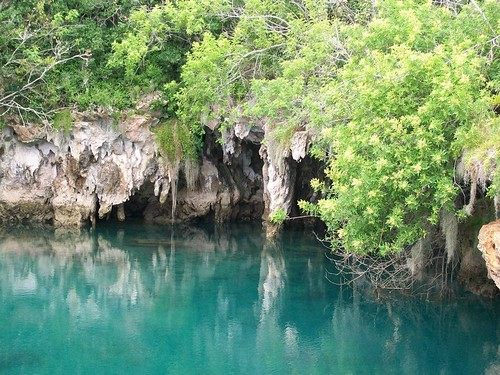Bermuda Car Rental >> Insider's Guide to Bermuda: Tom Moore's Jungle | Wandering